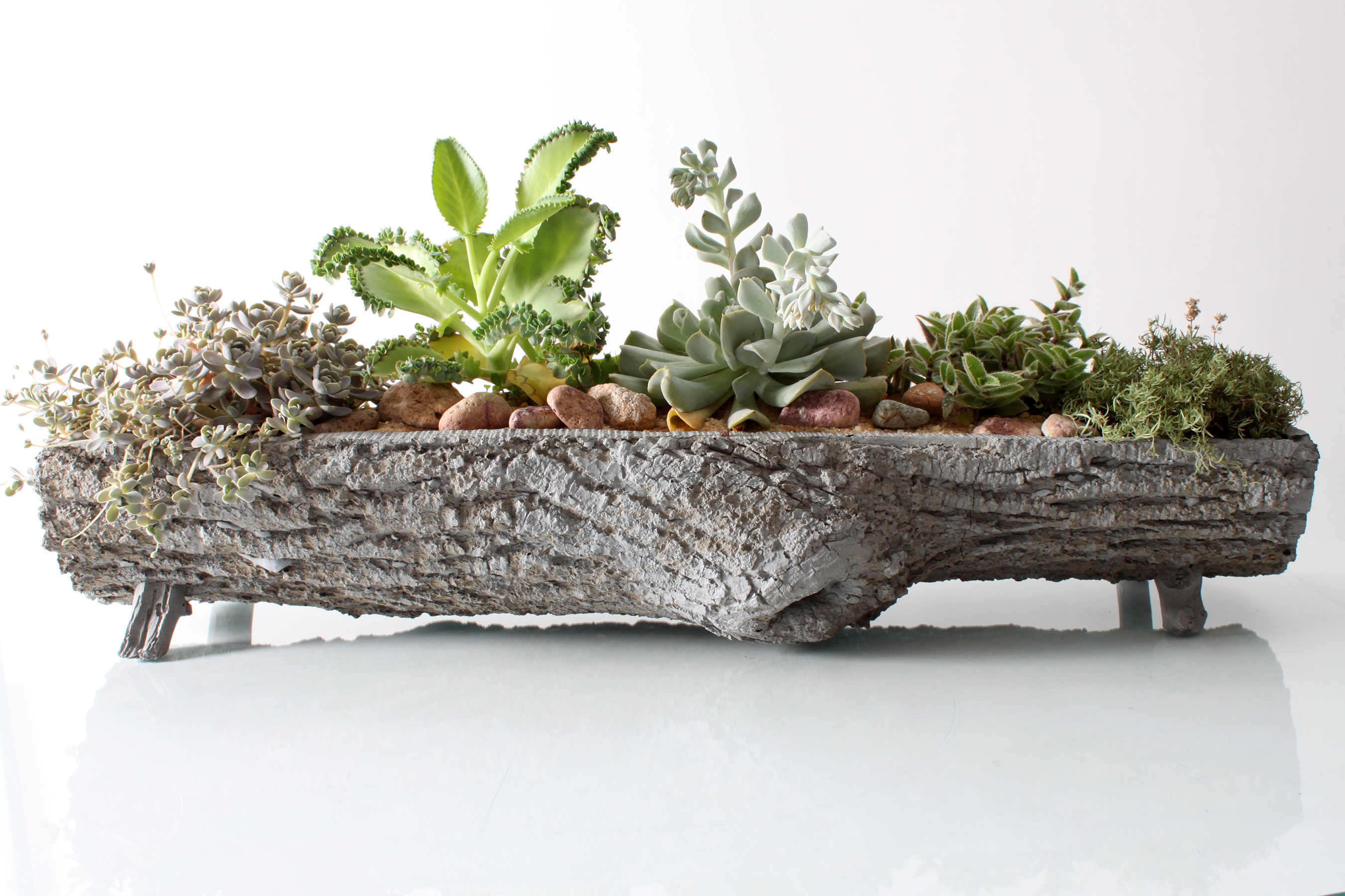 marketing wellness, healthy life-style, trends, eco-friendly, NativeCast, trough container
