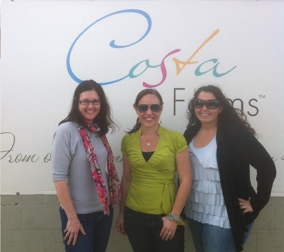 hiring a pr firm, bang for your buck pr firm, biggest roi public relations firm, costa farms, garden media group