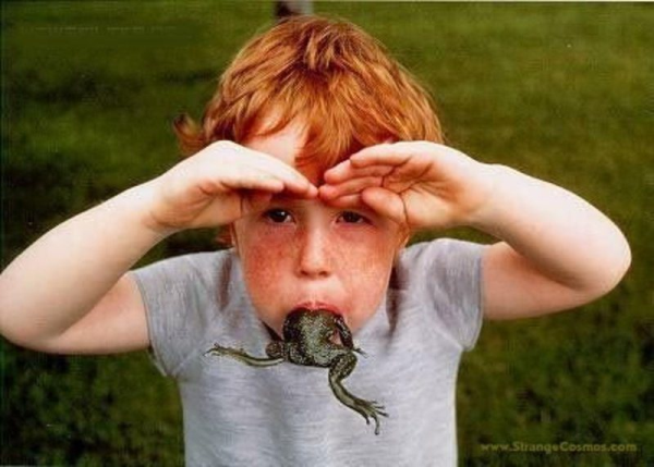 eat a frog