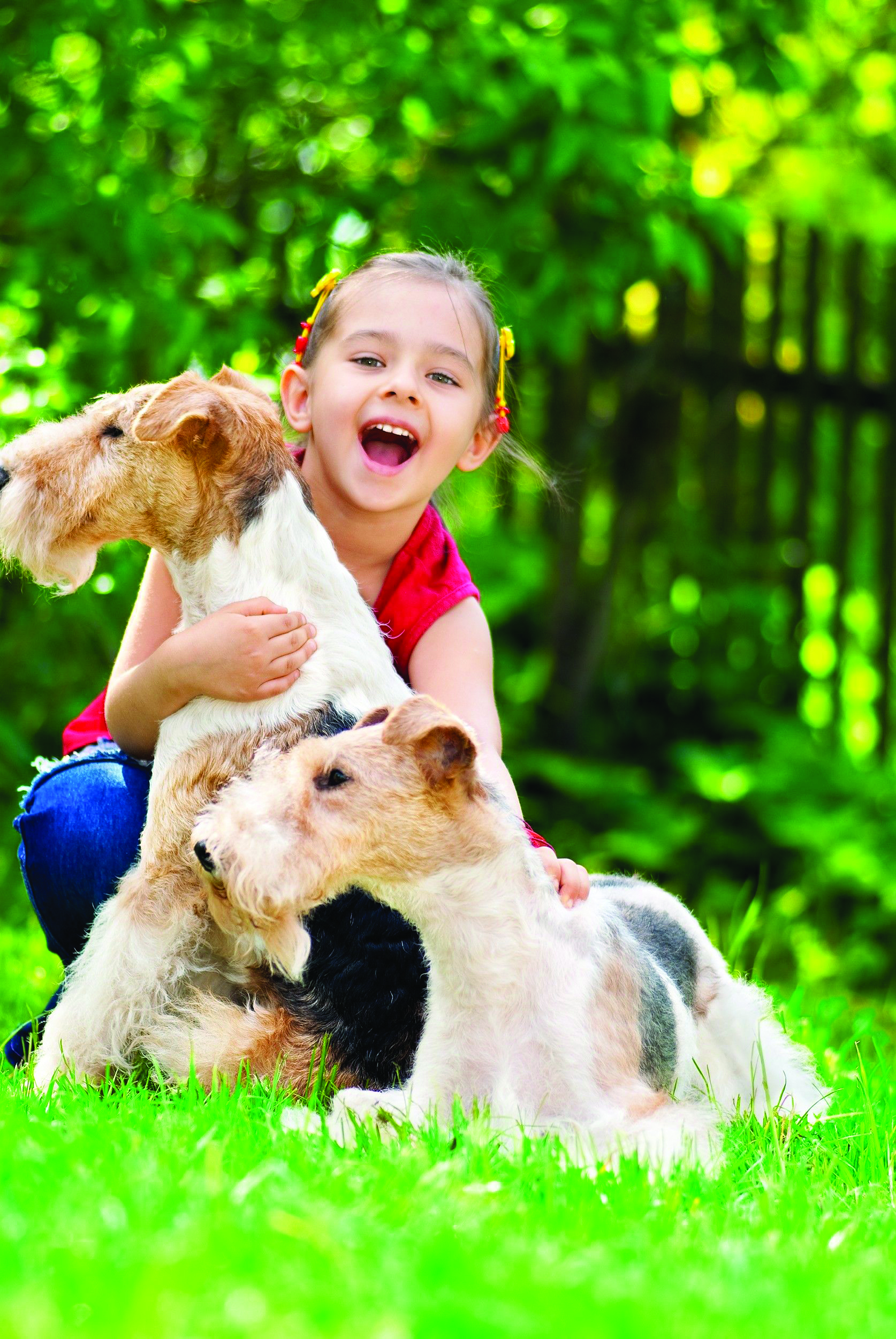 People_want_to_make_their_yards_more_pet-safe_by_using_organic_lawn_and_garden_products.jpg