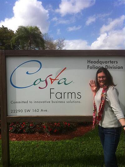 Garden Media Group, Costa Farms, Clients, Branding