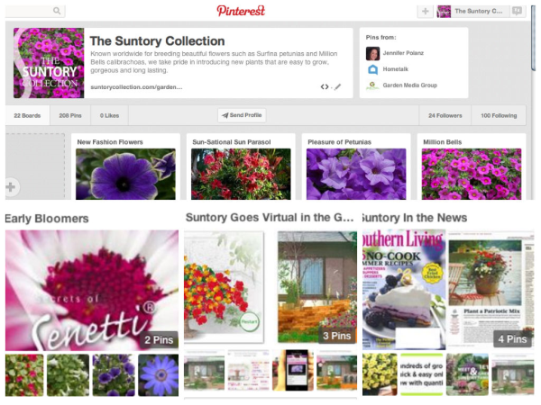 Pinterest, Suntory Flowers Pinterest, Flower Pins