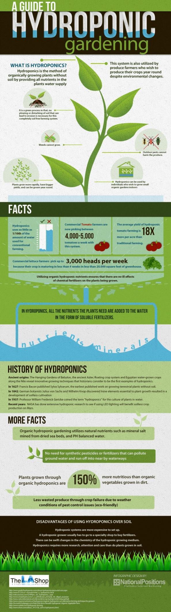 a guide to hydroponic gardening 50e13e6e99d21 w594
