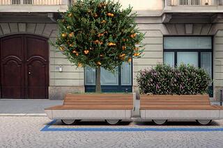tree trolley