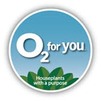 Garden Media Group created the O2 for You campaign for Costa Farms to promote the benefits of houseplants. It's been up running since 2009.