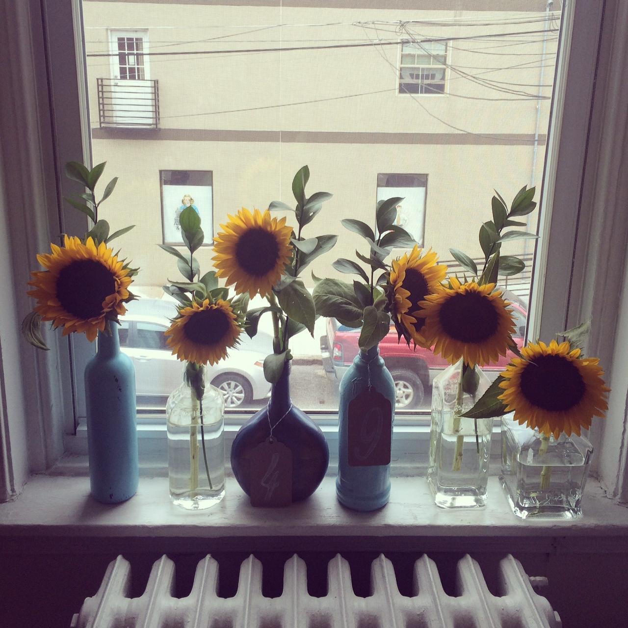 Sunflowers, portable gardening, garden trends