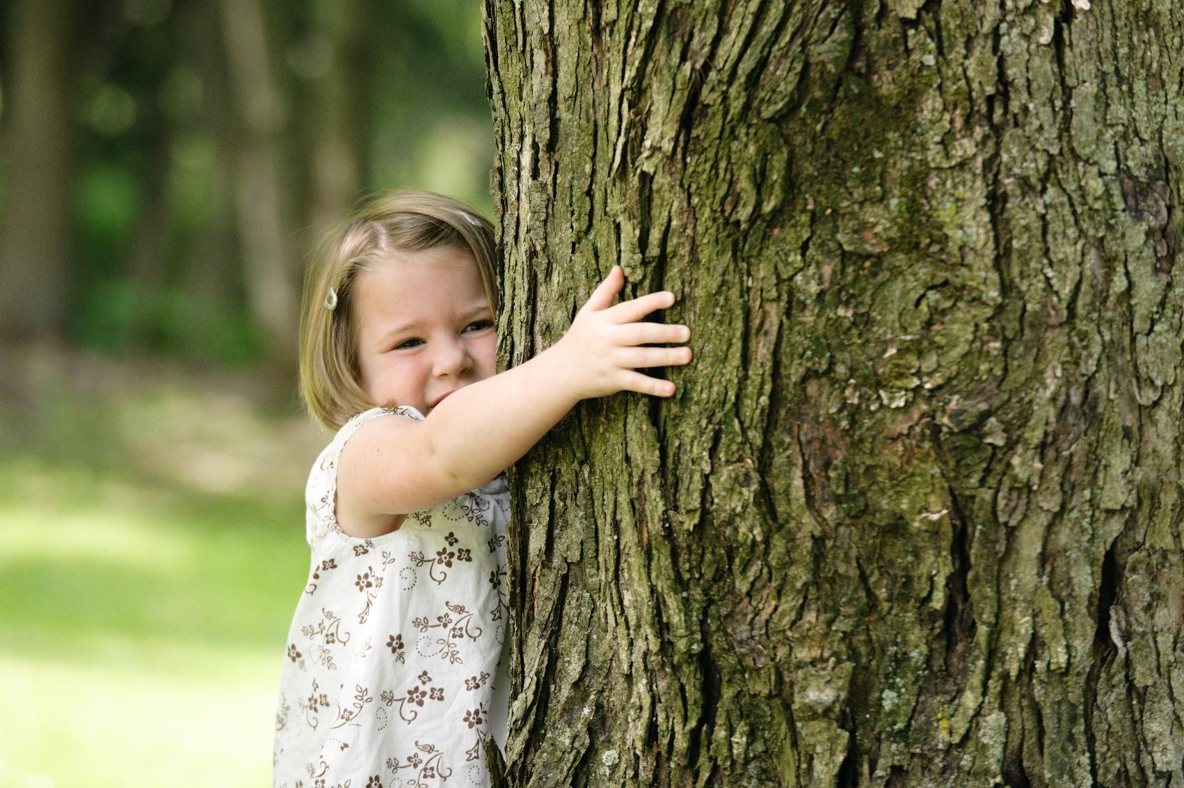 Benefits of Trees, Garden Media 2014 Garden Trends Report