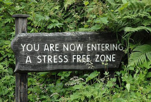 entering stress free zone1