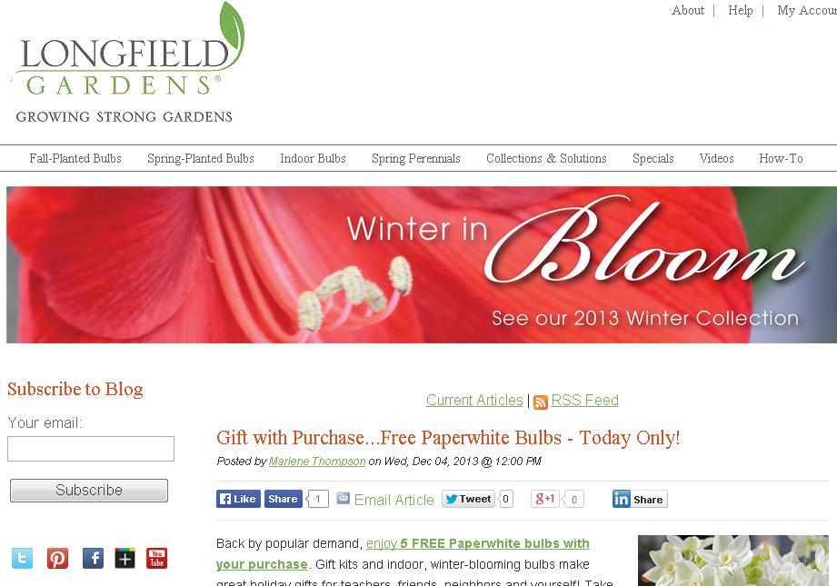 longfield gardens, online bulbs, garden blog