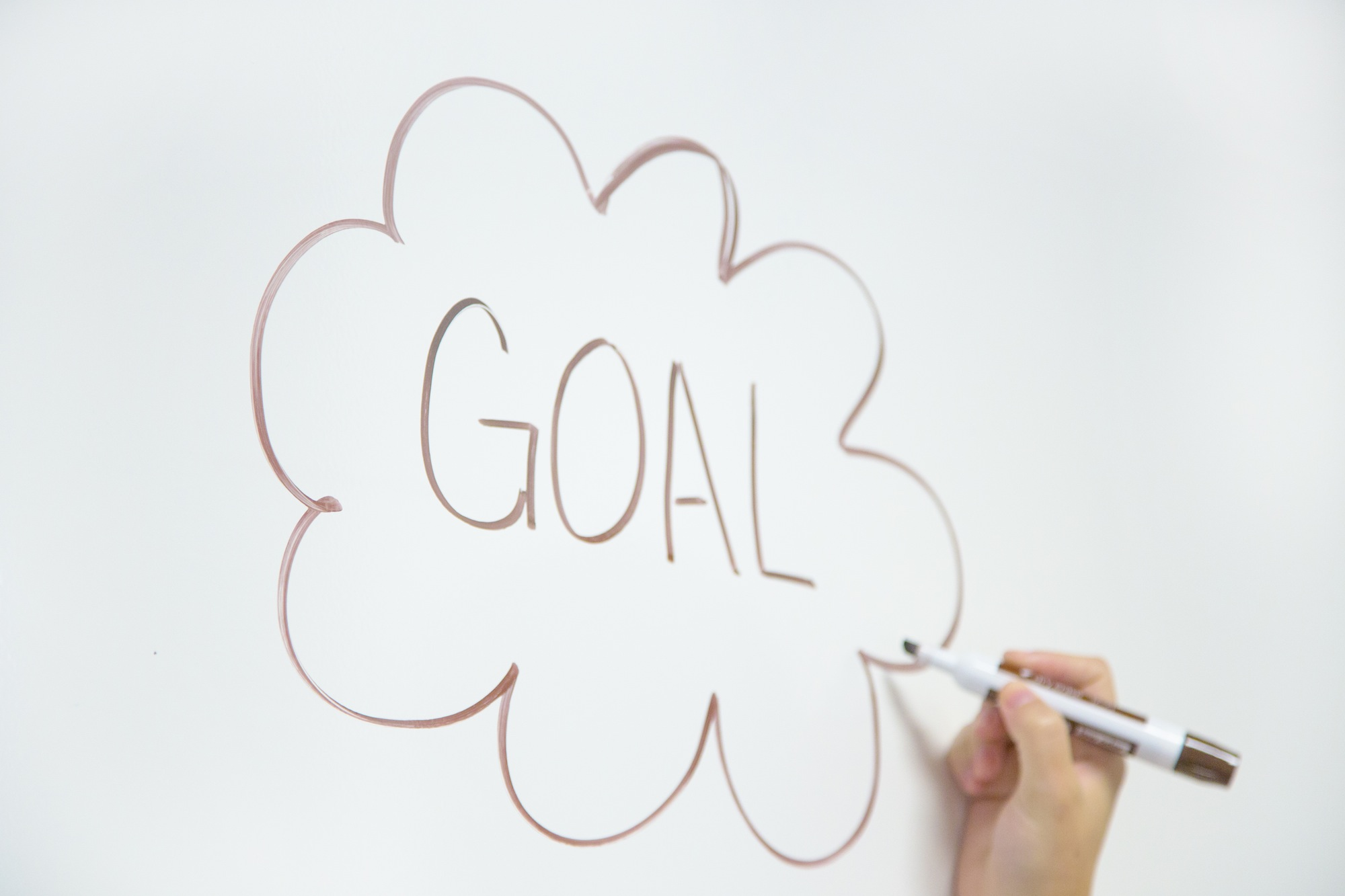 set goals PR, how to set goals in public relations, goals in a PR campaign, goals and gardening public relations, gardening marketing tips, garden media group