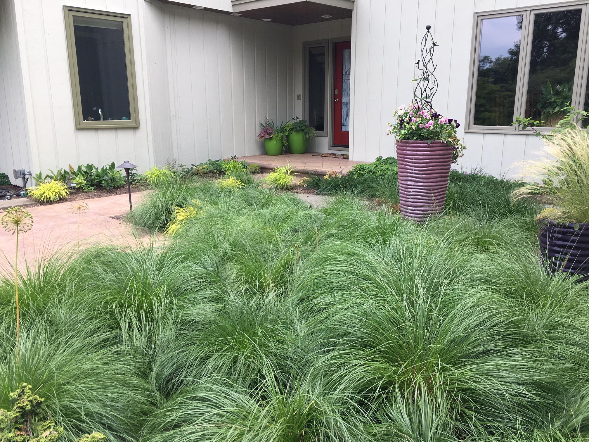 Imperfect gardening (5)