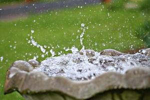 Make A Splash - title