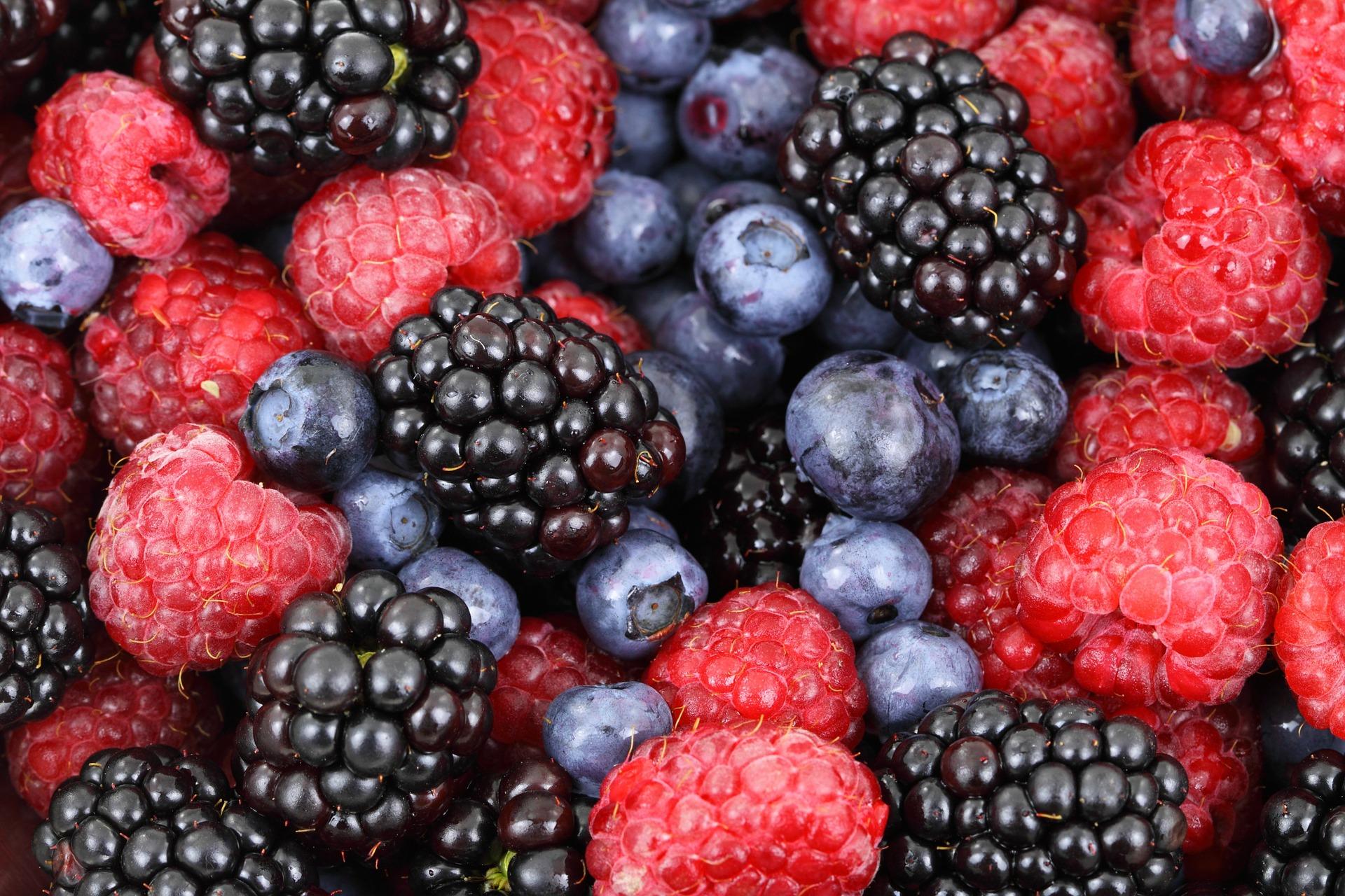Purple Reign - Berries-1