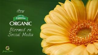 Social_Media_Marketing_2016-Cover.jpg