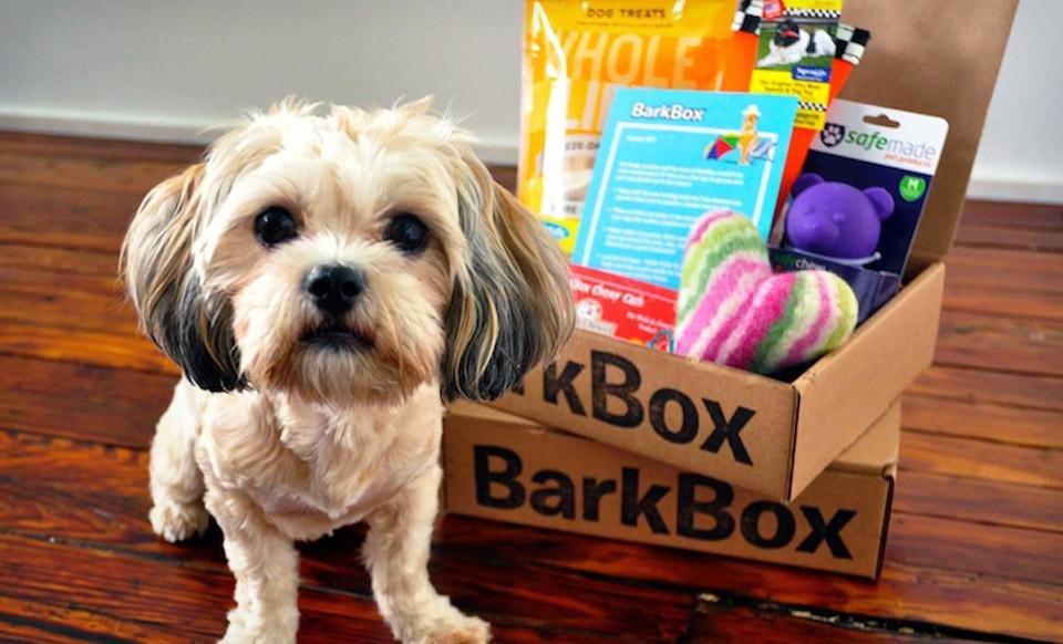barkbox.jpg