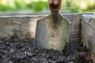 garden-1176406_960_720.jpg