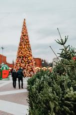 kaboompics_Christmas tree and decorations at the Manufaktura shopping mall
