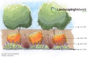 plant-tiering-landscaping-network_2676.jpg