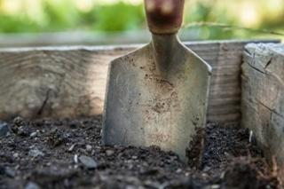 safe gardening.jpg